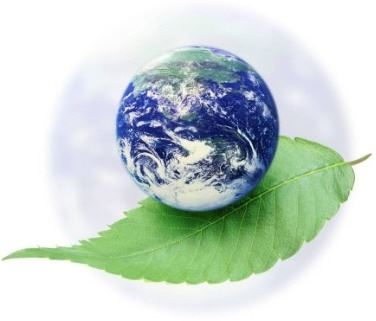 An image of the earth resting on a leaf.
